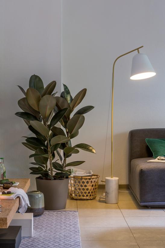 Lamp Leberstrasse Berlin immobilienagentur Fantastic Frank